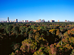 Aerial view of the Galleria area skyline on the horizon in Houston, Texas beyond dense wooded area in Autumn.