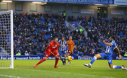 Connor Goldson ( R ) of Brighton and Hove Albion scores an own goal to make it 1-0 - Mandatory byline: Paul Terry/JMP - 07966 386802 - 01/01/2016 - FOOTBALL - Falmer Stadium - Brighton, England - Brighton v Wolves - Sky Bet Championship