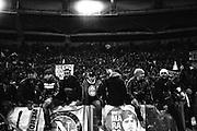 Tifosi napoletani durante la partita di campionato Lazio vs Napoli. Stadio Olimpico. 9 febbraio 2013. Christian Mantuano / Oneshot