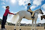 Connemara pony Show