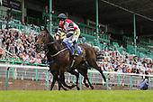 Horse Racing/Equestrian