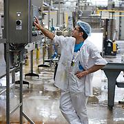 Nederland Giessen 26 augustus 2009 20090826 ..Serie over levensmiddelensector                                                                                      .HAK fabriek, werknemer met haarnetjes voor hygiene monitoort het productieproces en bedient het instrumentenpaneel.  Employee controling machine. ..Foto: David Rozing