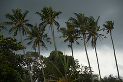 Picture by Mark Larner. Picture shows tropical storm, village of Bukit Naga, Malaysian Borneo. May 2008