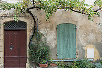 Two doors, one brown and one green, in a beige stone and plaster wall, with green leafy vines and a flower planter in the village of Seguret in Provence, France