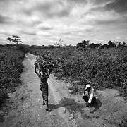 A 40 ans, Yousouf a tout perdu. Riche propriétaire terrien en Centrafrique, il possédait en outre de nombreuses têtes de bétail et une mine de diamant. Dans sa fuite, il n'a rien pu sauver. Pas même les 7 millions de francs CFA qu'il avait chez lui en liquide. Il erre désormais aux abords du camp de réfugiés de Timangolo au Cameroun dans lequel il vit depuis plusieurs mois déjà, comme en ce jour de novembre 2014, cherchant désespérément un sens à sa vie. Les hommes d'un niveau aisé avant le conflit vivent très mal cette déchéancesociale. Leurs bêtes, à la fois valeur pécuniaire et gage de respectabilité au sein de la communauté, ne sont plus qu'un lointain souvenir. Bon nombre d'entre eux a l'impression de ne plus exister aux yeux des autres. Pire encore, ils ne parviennent plus à assoir leur autorité de principe auprès des femmes qui, elles, continuent à être actives dans les camps pour tenir le foyer. S'en suivent bien souvent des violences conjugales difficiles à endiguer.