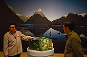 Brian Brake and Kura Pounamu shows at National Museum of China