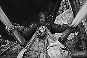 French guiana, ipoussing.<br /> <br /> Exploitation aurifere mecanisee, lances a eau.<br /> On cherche ici les paillettes d'or contenues dans le sol. On creuse d'abord des fosses au fond desquelles les ouvriers travaillent la couche de graviers auriferes qu&rsquo;ils prelevent au moyen de pelles mecaniques.  Le contenu des pelles est depose sur une table inclinee puis lave par les lances a eau.