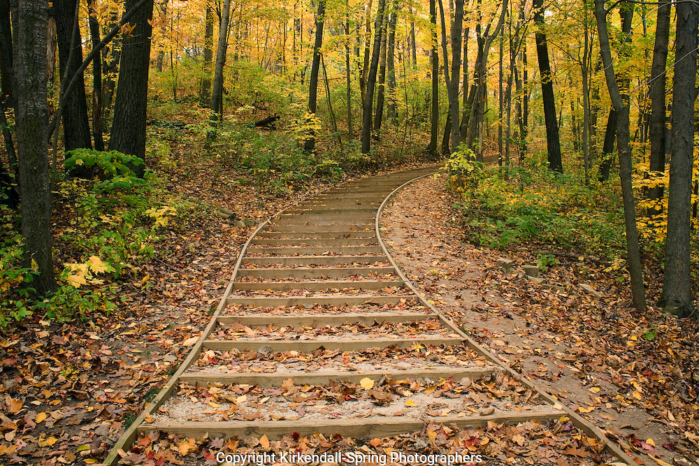 WI00142-00...WISCONSIN - Steps on trail to the Parnell Observation Tower in Kettle Moraine State Forest.