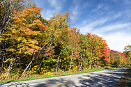Fall foliage color in Gatineau Park, Gatineau, Québec, Canada.  Photographed from Dunlop Road during Fall Rhapsody at Gatineau Park.