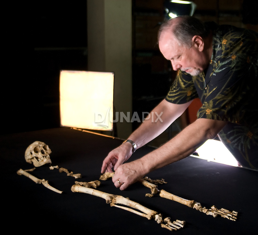 "Dr. William Jungers reconstructs ""LB1"", the type specimen skeleton of Homo floresiensis, a.k.a., the Flores hobbit."