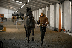 Isabel Cool, BEL, Aranco V<br /> Jumping Mechelen 2017<br /> © Sharon Vandeput<br /> 26/12/17
