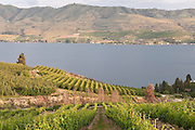 Benson Vineyards overlooking Lake Chelan, Washington