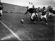 Rugby International, Ireland v Scotland..1962..24.02.1962..02.24.1962..24th February 1962..Image shows  W.J. McBride, Irish forward, kicking to touch after a line-out.  He got in his kick despite the effort of R. Stephen, Scottish forward..