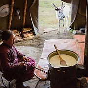 A Dukha (Tsaatan) reindeer herder woman is boiling fresh reindeer milk for cheese making, whilst a reindeer looks on, Mongolia. Approximately 200 families comprise the Tsaatan or Dukha community in northwestern Mongolia, whose existence is intimately linked to their herds of reindeer. Photo © Robert van Sluis