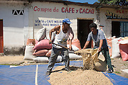 "11 NOVEMBER  2004 - TAPACHULA, CHIAPAS MEXICO: Workers scoop up dried coffee beans on the sidewalk in front of a ""coyote's"" storefront in Tapachula, Chiapas, Mexico. Coyotes are the middlemen in small scale Mexican coffee farming. They buy coffee from small farm owners and resell it to the companies that ultimately roast, grind and package it. Most of the coyotes deal in lower grade coffees, high grade coffee is sold on a contract basis by farmers and plantation owners directly to roasters. World coffee prices have been depressed for years by over production in Brazil and Vietnam and thousands of coffee farmers in Mexico and Guatemala have been forced to emigrate to the US as undocumented workers because of the crisis in the coffee industry. Many of the plantations in Mexico and Guatemala have been forced to closed because of the crisis. PHOTO BY JACK KURTZ"