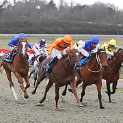 Lingfield 24th February