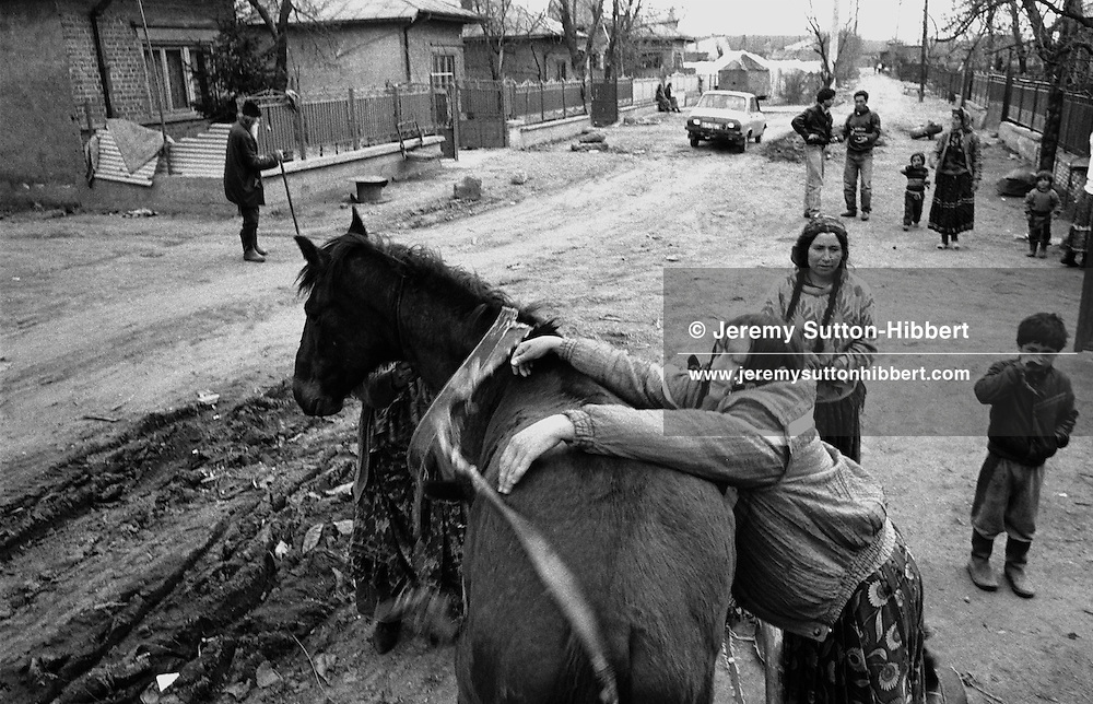 Veta Mihai tends to one of her family's horses in the Romanian Roma camp of Sintesti. The camp consists of many families whose predominent occupation is concerned with metal working.