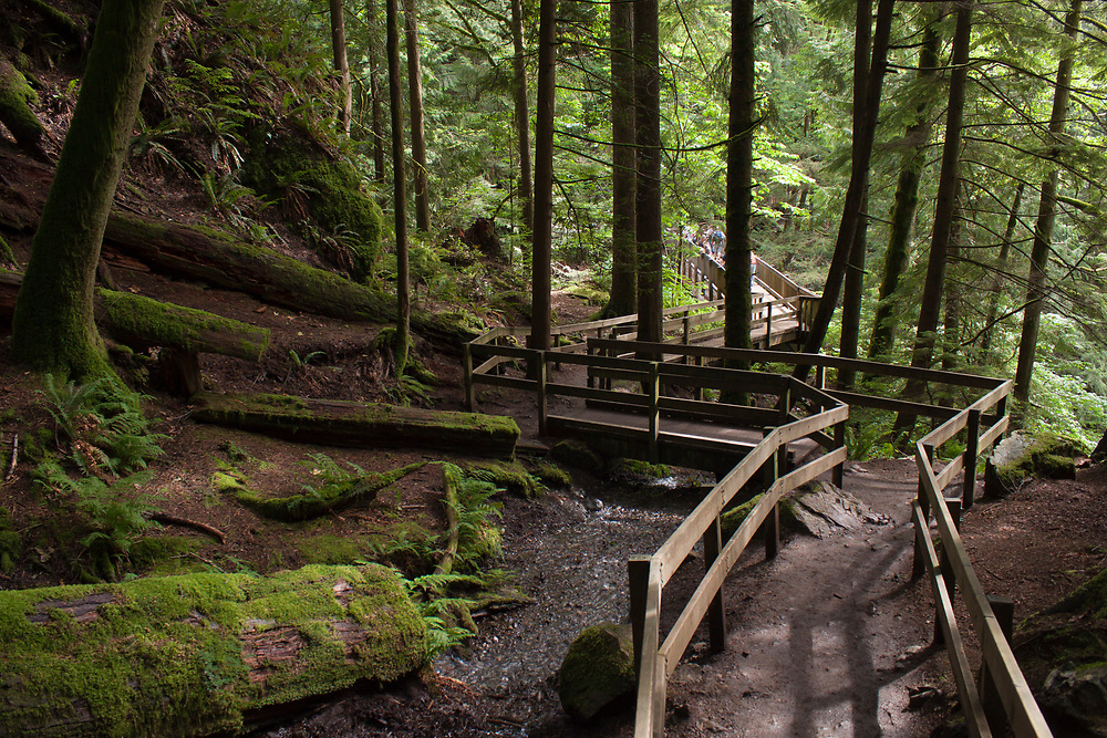 North America, United States, Washington, North Bend, Olallie State Park, hiking trail to Twin Falls