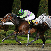 Shirataki and Chris Catlin winning the 7.30 race