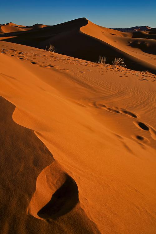 Erg Chebbi Sand Dunes, Morocco