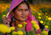 PUSHKAR, INDIA - CIRCA NOVEMBER 2016: Portrait of Indian Woman surrounded by Marigolds