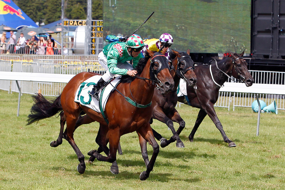 A Touch of Ruby ridden by Craig Grylls, left, leads the field, including a riderless horse on the far right, home in the in the 1600m Group I Thorndon Mile at Trentham Racecourse, Wellington, New Zealand, Saturday, January 25, 2014. Credit: SNPA/Dean Pemberton