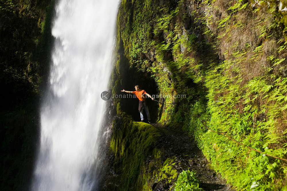 A young man, holds onto a safety cable and reaches out to feel the cold waters of beautiful Tunnel Falls on Eagle Creek trail in the Columbia River Gorge, Oregon, USA. Tunnel Falls received its name due to a tunnel being cut from the bedrock behind the falls so that hikers and trail runners can pass further up the gorge.  The trail becomes very narrow during this section and it is necessary to hold onto a safety cable. (Model Released)