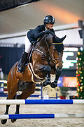 Megan Laseur - Just One<br /> KWPN Hengstencompetitie 2019<br /> © DigiShots