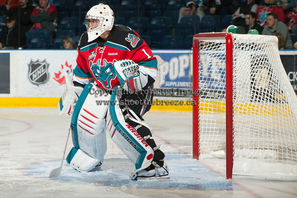 KELOWNA, CANADA - NOVEMBER 9:  Jackson Whistle #1 of the Kelowna Rockets defends the net against the Red Deer Rebels at the Kelowna Rockets on November 9, 2012 at Prospera Place in Kelowna, British Columbia, Canada (Photo by Marissa Baecker/Shoot the Breeze) *** Local Caption ***
