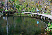 Child walking on curved, raised walkway over pool. Plitvice National Park, Croatia