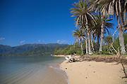 Kualoa Beach Park, Windward Oahu, Hawaii