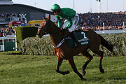 Valtor and jockey Daryl Jacob head to the start for the 5:15pm The Randox Health Grand National Steeple Chase (Grade 3) 4m 2f during the Grand National Meeting at Aintree, Liverpool, United Kingdom on 6 April 2019.