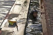 Des enfants se baignent dans les rues et les canaux d'&eacute;vacuation qui d&eacute;bordent. <br /> Durant la f&ecirc;te de l'eau, dans les rues de Mandalay, deuxi&egrave;me ville du pays, comme partout au pays, les jeunes se rassemblent pour danser et se faire arroser au son de la musique techno.<br /> En Birmanie, la plus grande f&ecirc;te de l&rsquo;ann&eacute;e, Thingyan (la f&ecirc;te de l&rsquo;eau), se d&eacute;roule au mois d&rsquo;avril. Elle marque la fin de l&rsquo;ann&eacute;e birmane et le d&eacute;but de la nouvelle ann&eacute;e, et elle dure cinq jours. Traditionnellement, les Birmans se lancent de l&rsquo;eau les uns aux autres &agrave; l&rsquo;aide de seaux, de pistolets &agrave; eau ou de tuyaux d&rsquo;arrosage, et ce, dans le but de s&rsquo;&eacute;changer leurs bons v&oelig;ux. Impossible d&rsquo;y &eacute;chapper : m&ecirc;me les touristes doivent participer !