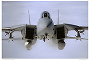 F-14A Tomcat Head-on
