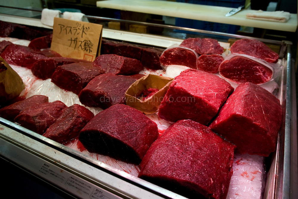 "Whale Meat Shop at Tsukiji Fish Market, Tokyo. The meat on display includes endangered fin whale meat, recently controversially imported from Iceland...the cardboard sign reads ""fin whale, Iceland"". Tsukiji fish market is the biggest wholesale fish and seafood market in the world."