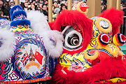The heads of the flying lions wait in front of the stage with the motto, China UK Gold Era - Chinese New Year Celebrations in London 2018 marking the arrival of the Year of the Dog. The Event started with a Grand Parade from the North East side of the Trafalgar Square and finishing in Chinatown at Shaftesbury Avenue. It was organised by London Chinatown Chinese Association and is supported by The Mayor of London and Westminster City Council.