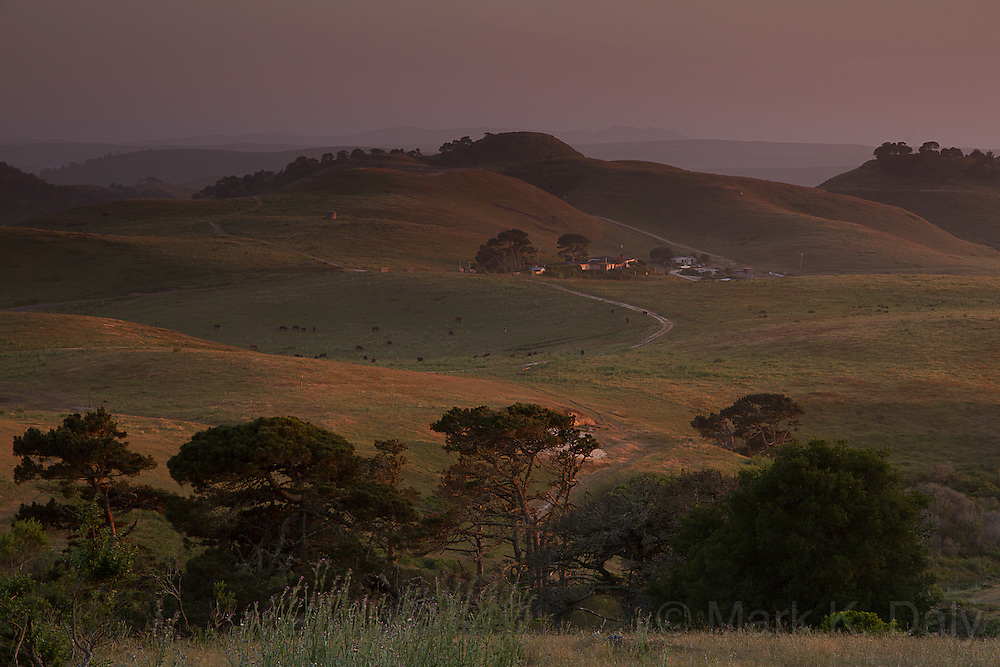 Point Reyes Farmland