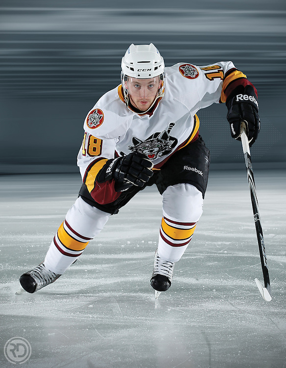 Jordan Schroeder, Vancouver Canucks first round selection, for the Chicago Wolves BreakAway magazine.
