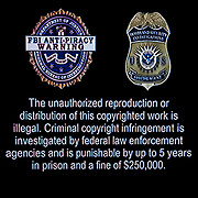 Anti- Piracy warning the unauthorized reproduction or distribution of this copyrighted work is illegal.  Criminal copyright infringement is investigated by federal law enforcement agencies and is punishable by up to 5 years in prison and a fine of $250,000.00