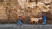 Boys with a Goat Antigua Guatemala