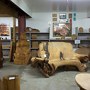Ancient Kauri Kingdom is a multi-award winning business that has pioneered the commercial extraction, milling and manufacture of Ancient Kauri wood. A giant Ancient Kauri staircase is the centre piece for the Ancient Kauri Kingdom showroom and retail outlet at the shop and factory at Awanui in far north New Zealand. Carved from a 50 tonne section of one giant swamp kauri log estimated to weigh 140 tonnes it is the largest swamp kauri log ever known to have been extracted, and because of this it was never milled..Radiocarbon dating confirmed that this tree had been perfectly preserved in the swamp for 45,000 - 50,000 years. Growth rings tell us it had lived 1087 years before it fell more than 45,000 years ago. Awanui, Northland, New Zealand.  21st November 2010. Photo Tim Clayton