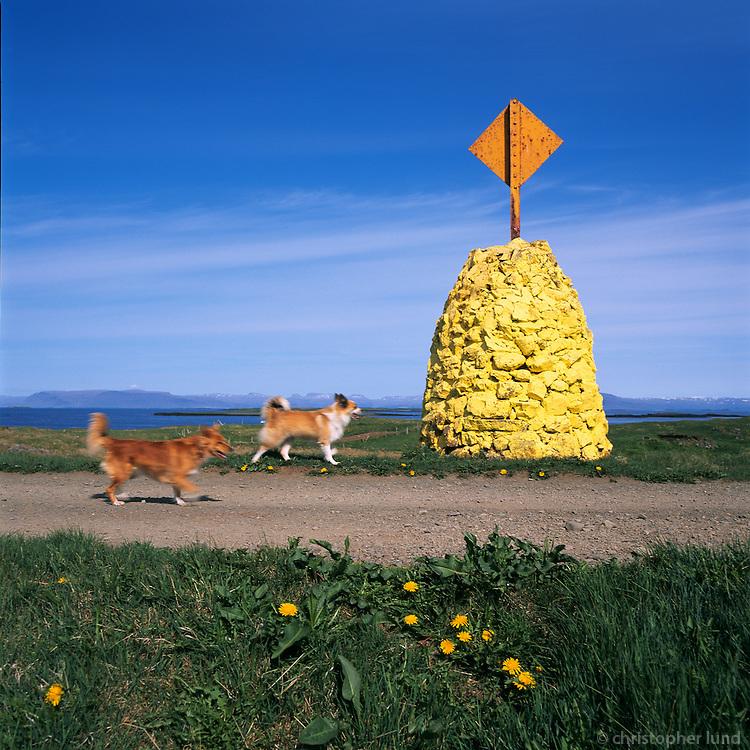 Hundar og siglingamerki í Flatey.