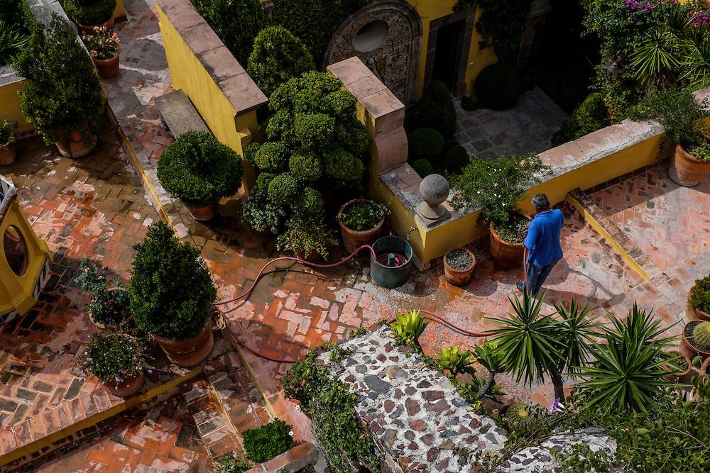 Seeing Gardens. San Miguel de Allende, Mexico.