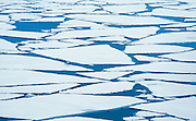 Ice breaking up on Lake Superior in late winter<br /> <br /> Nipigon<br /> Ontario<br /> Canada
