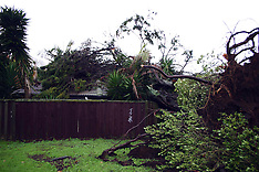 Auckland-Weather bomb uplifts trees and plane, Penrose