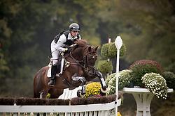 Meier Kai-Steffen, GER, Painters Maxim<br /> World Championship Young Eventing Horses<br /> Mondial du Lion - Le Lion d'Angers 2016<br /> © Hippo Foto - Dirk Caremans<br /> 22/10/2016