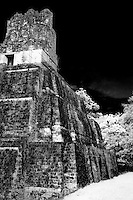 The magnificent Mayan ruins of Tikal in the jungles of Guatemala, Central America.