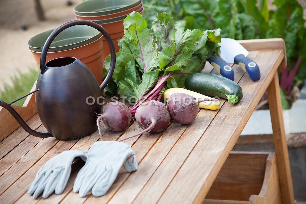 Fresh Organic Garden Vegetables
