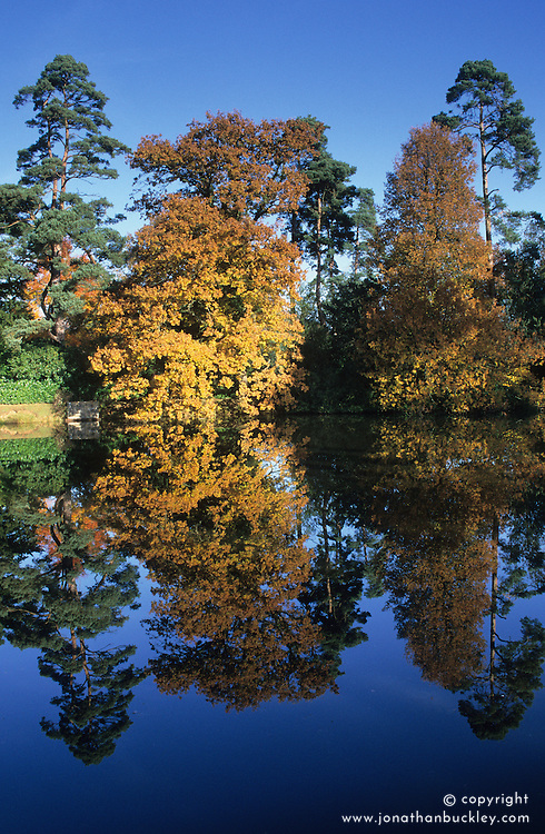 Sheffield Park in autumn