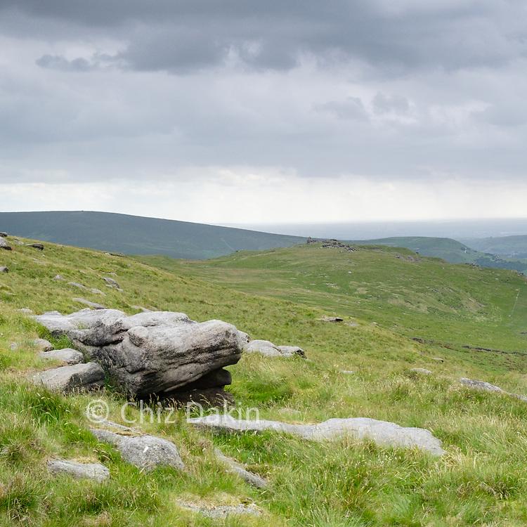 A toad-like rock (near Shaw Rocks)